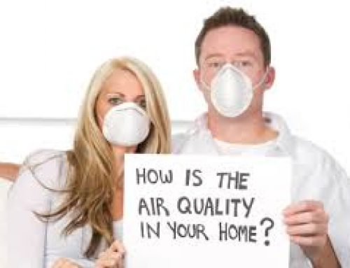 Winter Carpet Cleaning and Indoor Air Quality