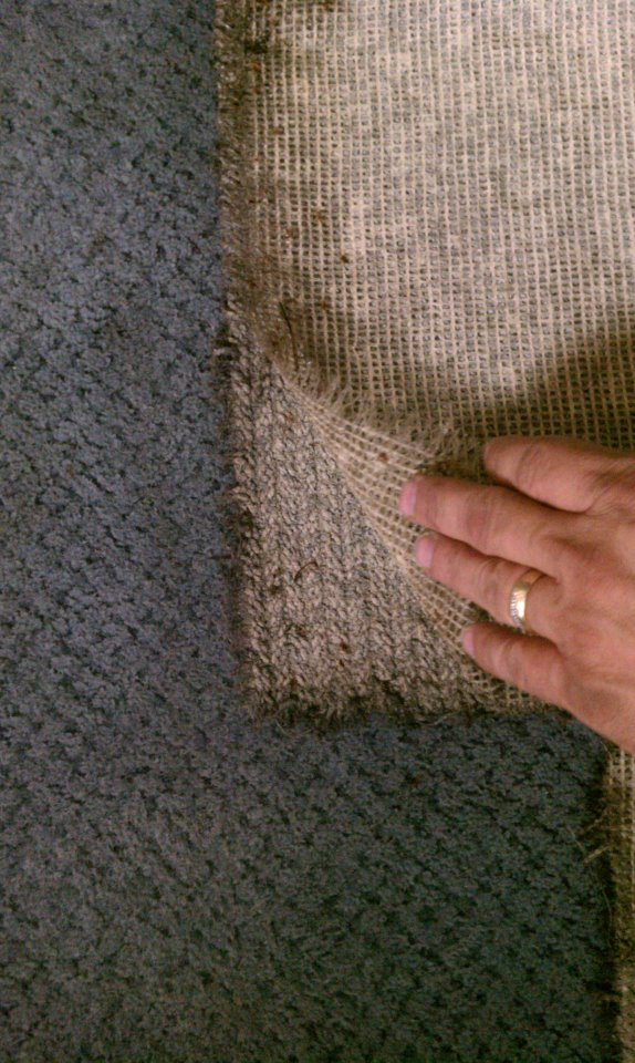 Hydro Clean Carpet Cleaning
