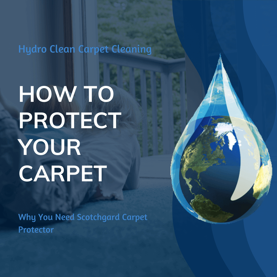 featured image how to protect your carpet
