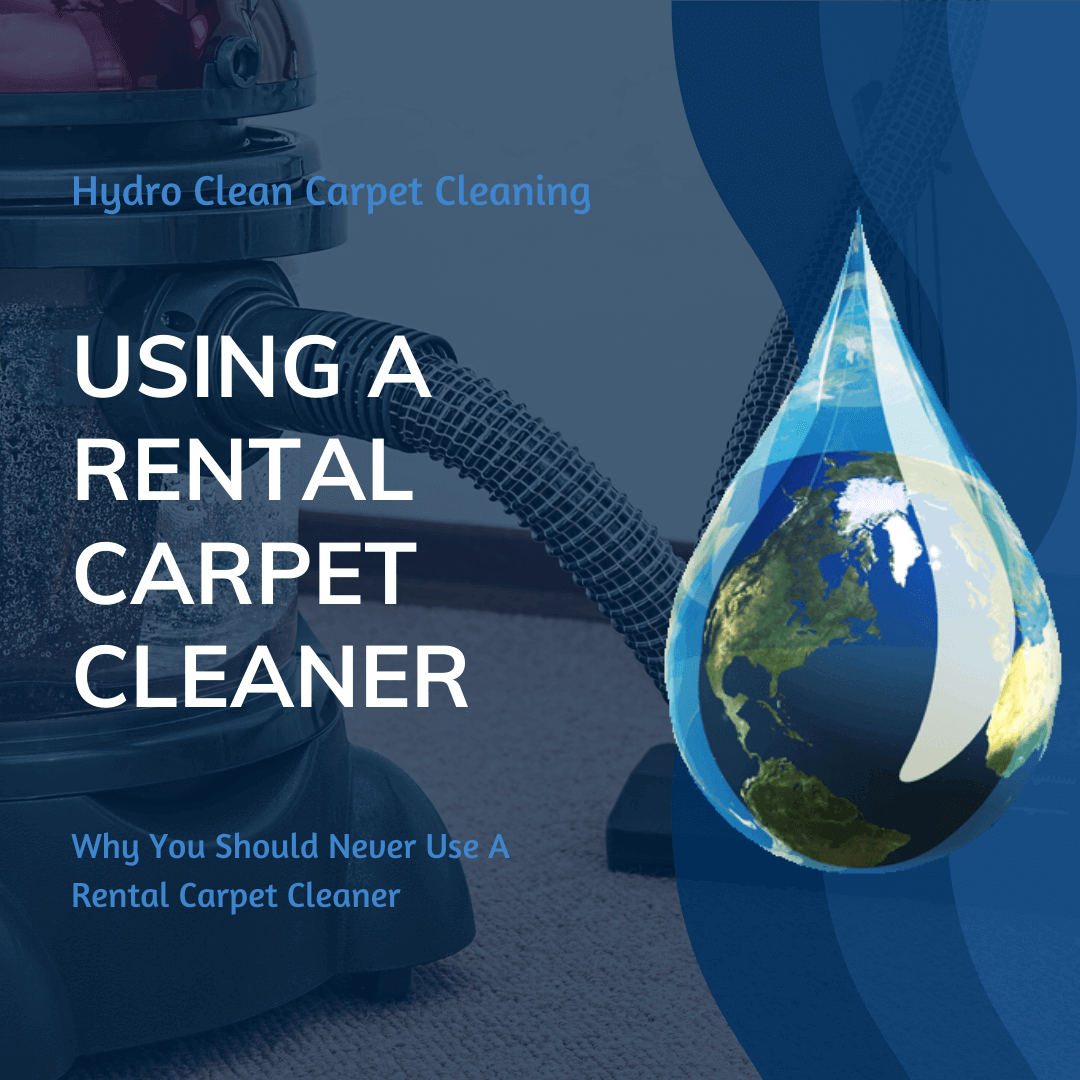 featured image using a rental carpet cleaner