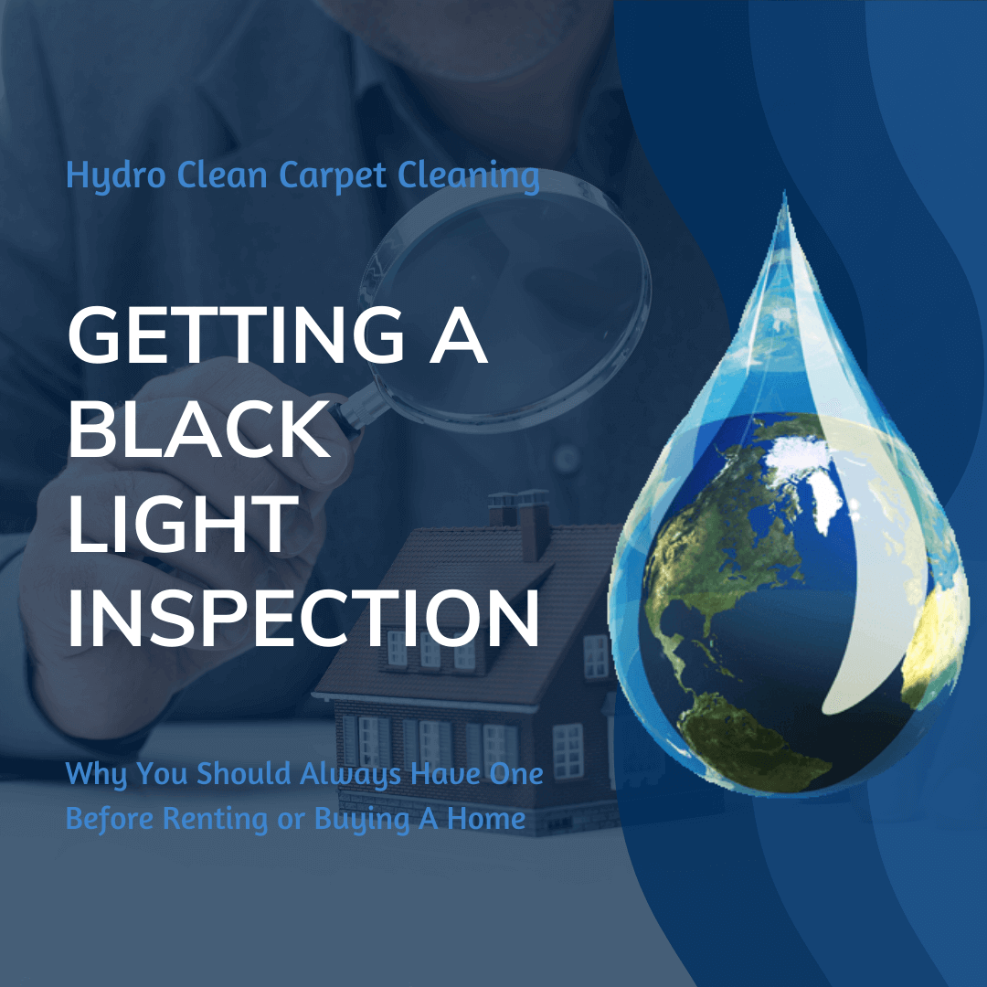 featured image getting a black light inspection