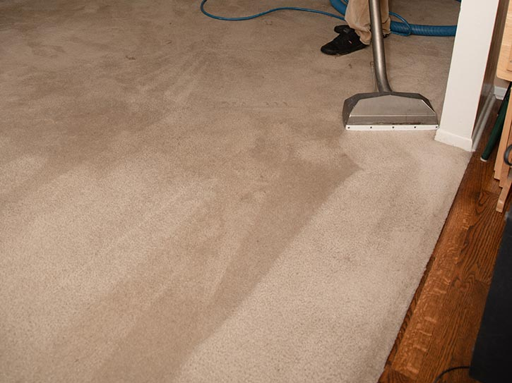 Best carpet cleaning colorado springs