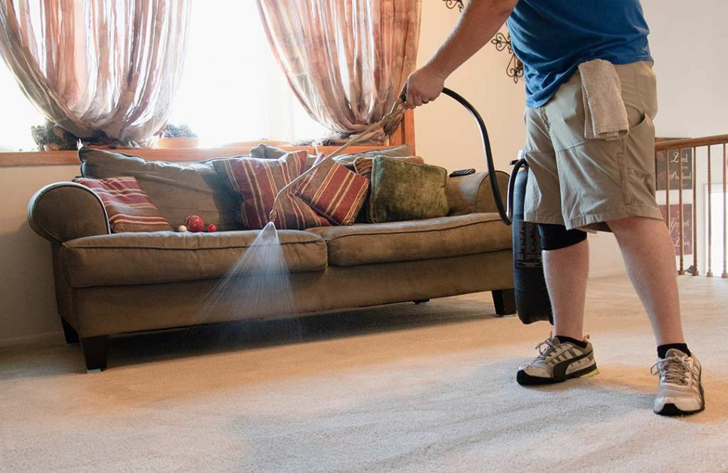 Applying scotchgard to the carpet at a clients house