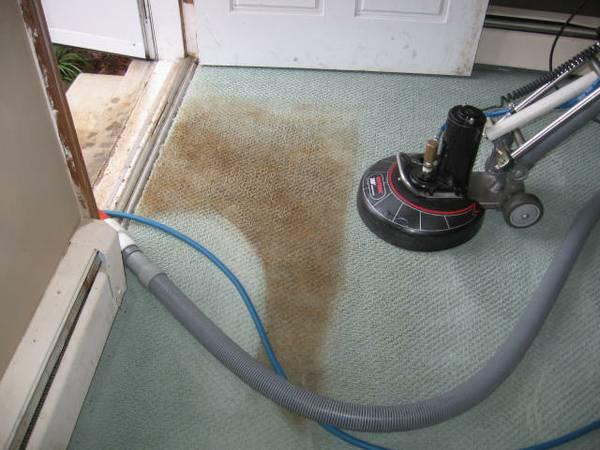 Rotovac Tool on Carpet