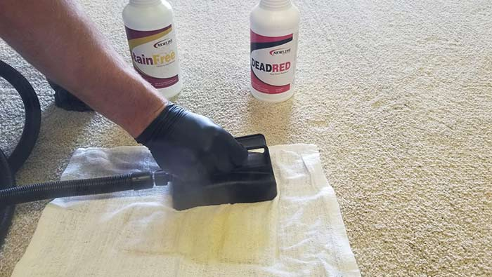 Applying heat and dead red to a stain